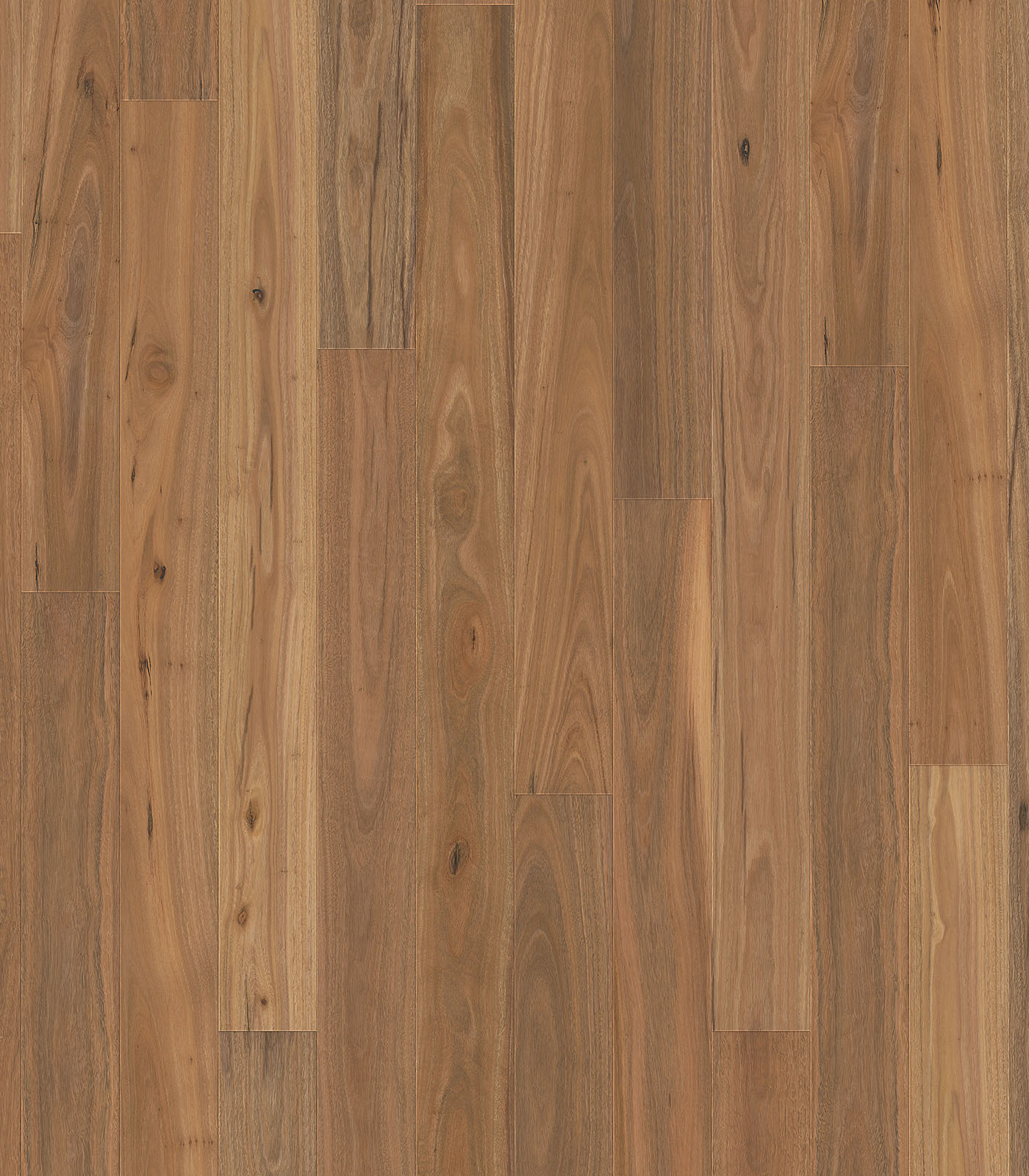 Spotted Gum Woodline Parquetry